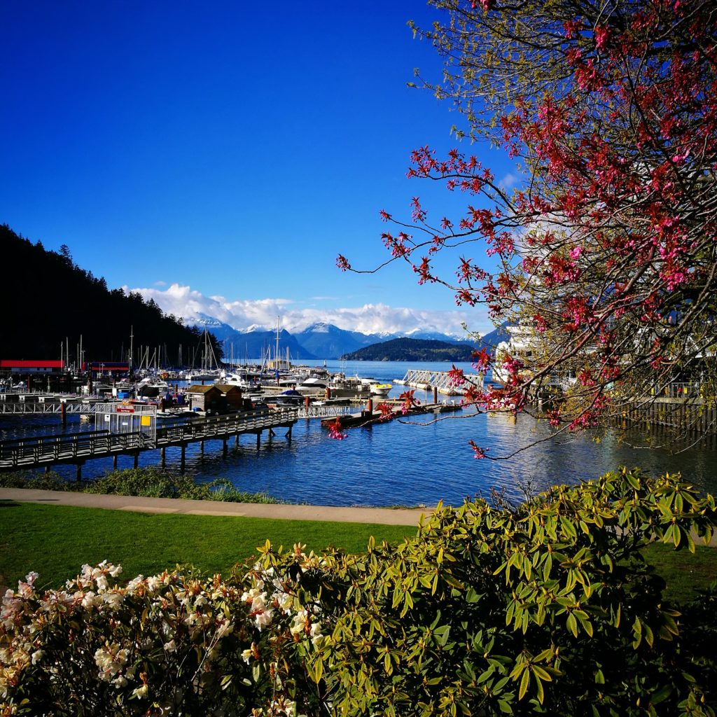 Gorgeous views from Horseshoe Bay, North Vancouver, Canada