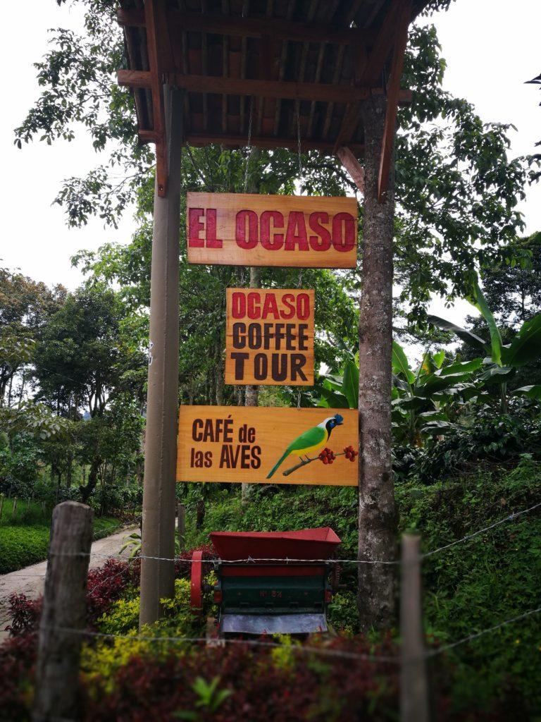 El Ocaso coffee finca - On our Coffee tour Salento
