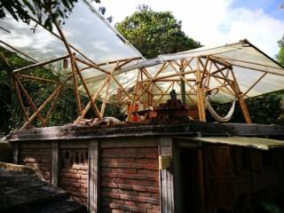 Kasaguadua Eco-Lodge, a jungle haven! Salento, Colombia