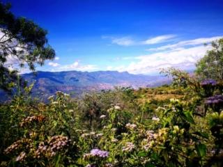 Beautiful views across Santander, Colombia