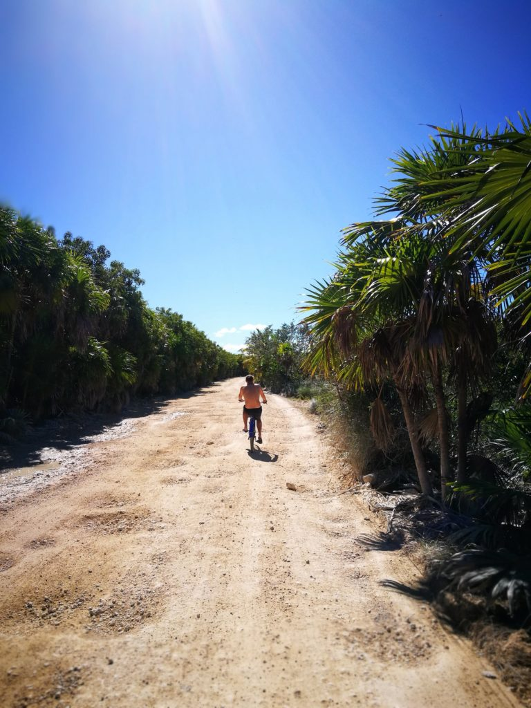 Cycling into the Sian Ka'an biosphere
